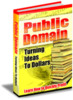 Thumbnail Public Domain: Turning Ideas to Dollar$ PLR