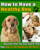 Thumbnail How To Have a Healthy Dog ebook PLR