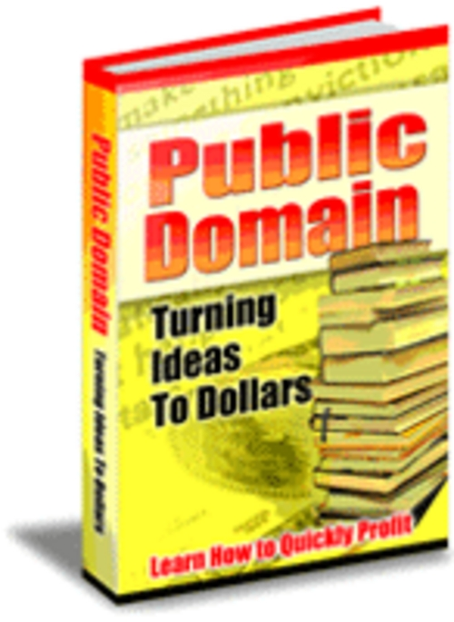 Product picture Public Domain: Turning Ideas to Dollar$ PLR