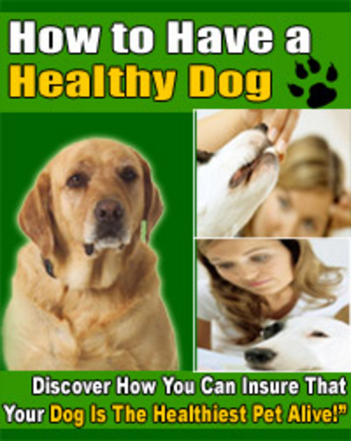 Product picture How To Have a Healthy Dog ebook PLR