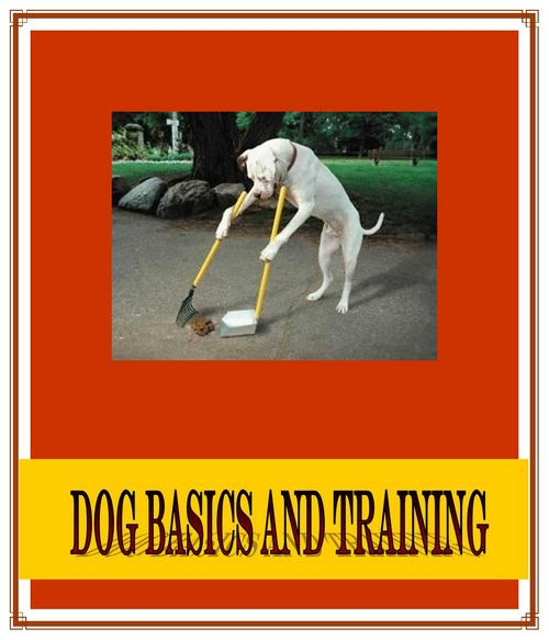 Product picture  DOG BASICS AND TRAINING ebook PLR